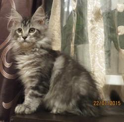 Beatrice (4).JPG