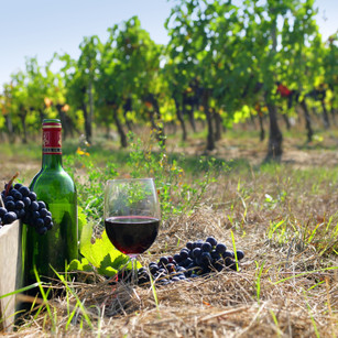 Wijntoerisme