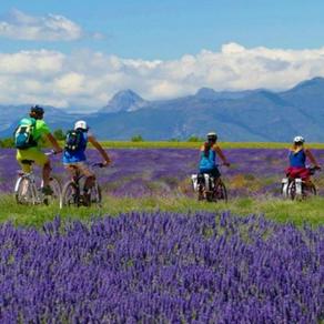 Originele activiteiten in de Provence-Alpes-Côte d'Azur