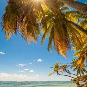 De archipel van Guadeloupe: een zonovergoten plek voor kleurrijke ervaringen!