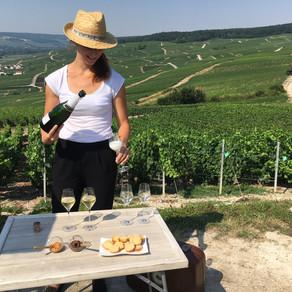 Sales Manual nr 2-2020: La Marne-La Champagne