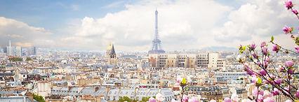 img_Parijs_lente_©Istock_neirfy.jpg