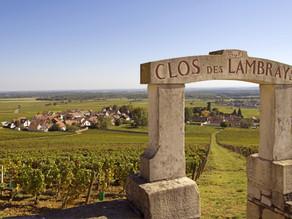 Virtual Travel to France: Bourgogne-Franche-Comté, natuur, natuur & natuur