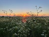 Sunset over Warham Greens