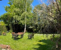 Garden from kitchen path