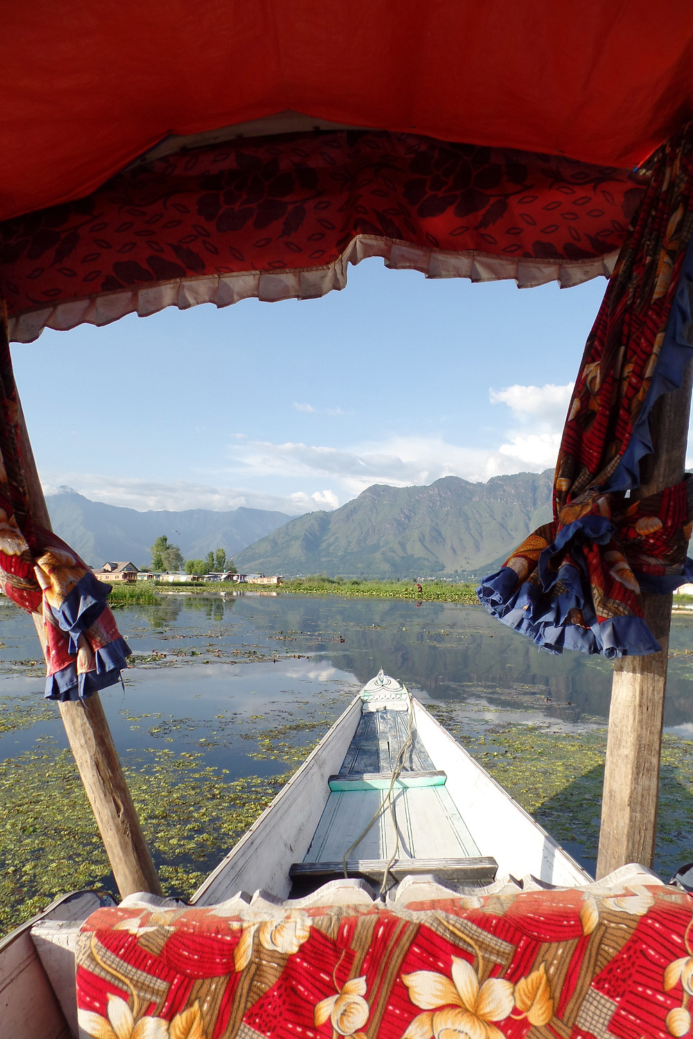 A Shikara ride on Dal Lake