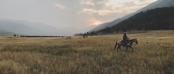Yellowstone | Paramount Pictures