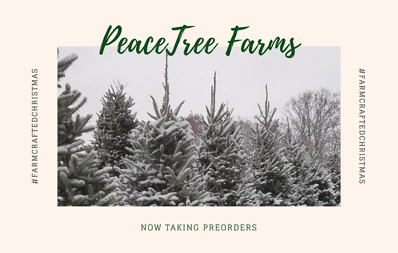 PeaceTree Farms (5).png