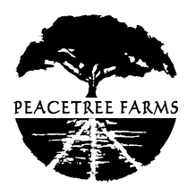 peacetree_logo_BLACK copy.png