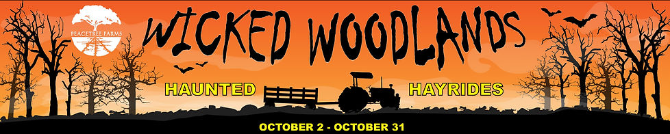UPDATE Wicked Woodlands Banner 2020.jpg