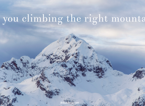 Are you climbing the right mountain?