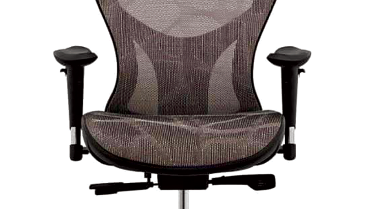 Director web imported medical chairQ9