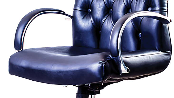 Director leather capetone chair