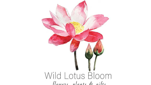 Wild Lotus Bloom