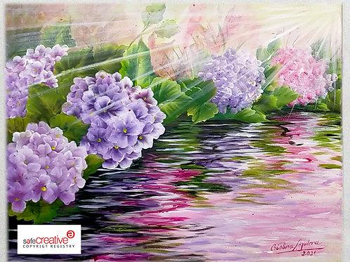 Reflejos de hortensias en el agua