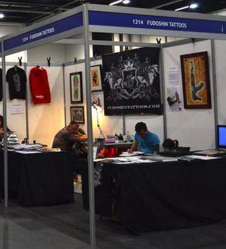 The Mixed Martial Arts International Seni