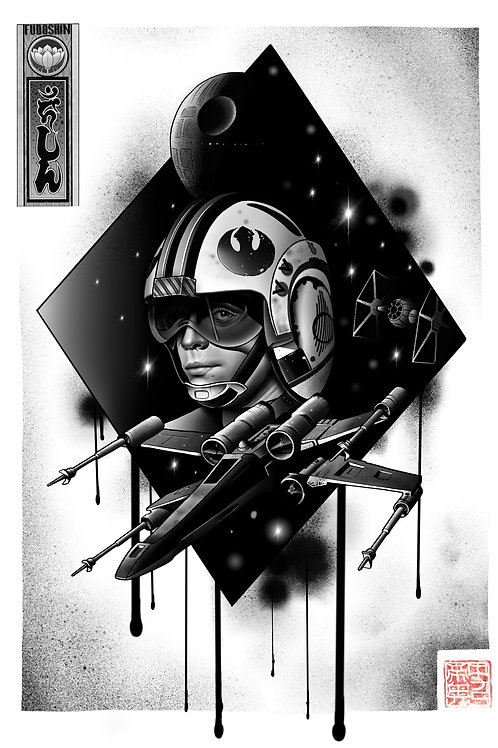 Skywalker Xwing