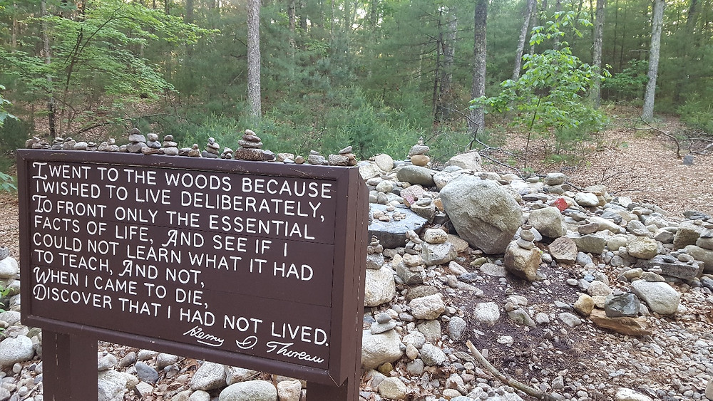Thoreau's cabin site Walden Pond