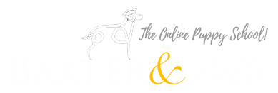 B&B PARTNERS Logo WHITE PHOTOSHOP File_p