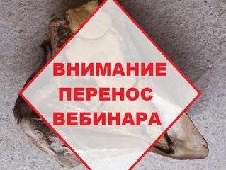 ВНИМАНИЕ! Перенос вебинара Марии Жуковой