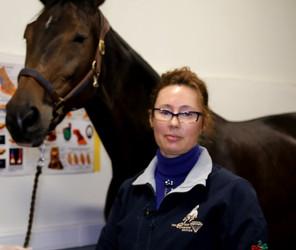 24-25 ноября продвинутый курс по УЗИ ног лошади