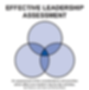 EffectiveLeadershipAssessment_edited.png