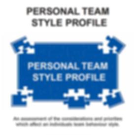 TeamStylesProfile_edited.png
