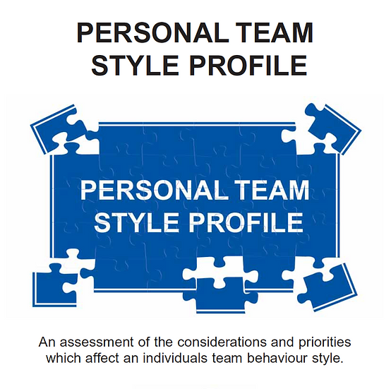 Online Personal Team Style Profile