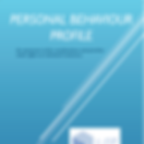 PersonalBehaviourProfile_edited.png