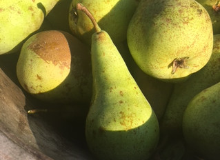 Pickled and spiced pears
