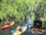 paddlebru website.jpg