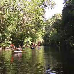dora canal paddle
