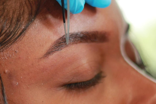 Eyebrow Extensions Online course
