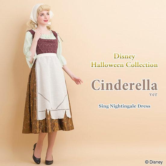 Secret Honey Cinderella Sing Nightingale Halloween dress untagged