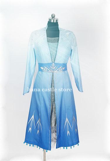 Dreamy collection Frozen 2 Elsa costume