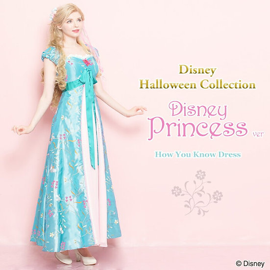 Secret Honey Disney Princess Giselle enchanted how you know Halloween dress