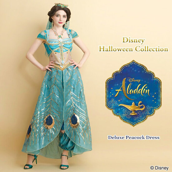 Secret honey aladdin live action jasmine full set ( costume and accessories)