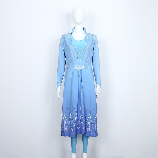 Disney Frozen2 low cost Elsa Dress