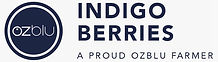 IndigoBerries-Wordmark-Big-01.jpeg