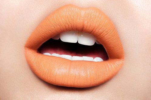 Melt Cosmetics Lipstick- 1969