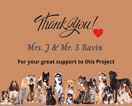 J & S Ravin for your great support to this Project 2.png