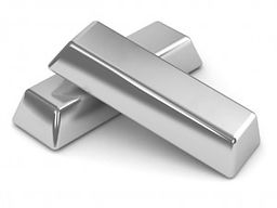 BCMDA-silver-support-pic-300x225.jpg