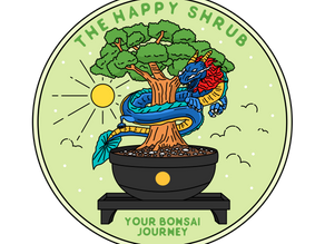 The Happy Shrub: A Link Between Bonsai And Mental Health