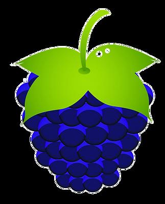 4%20berries_edited.png