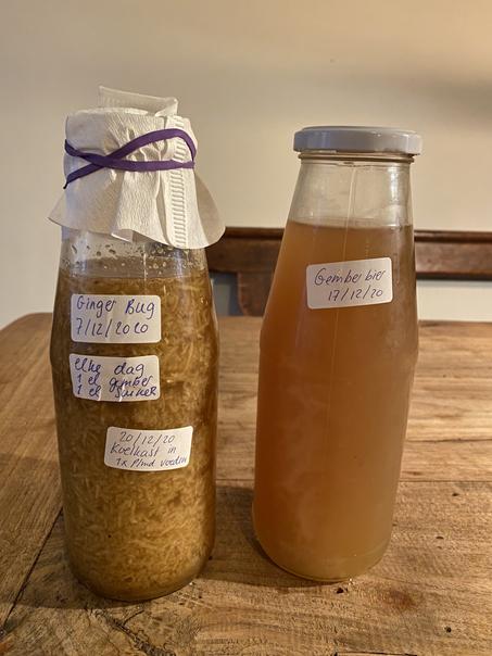 Fermenteren: gingerbeer