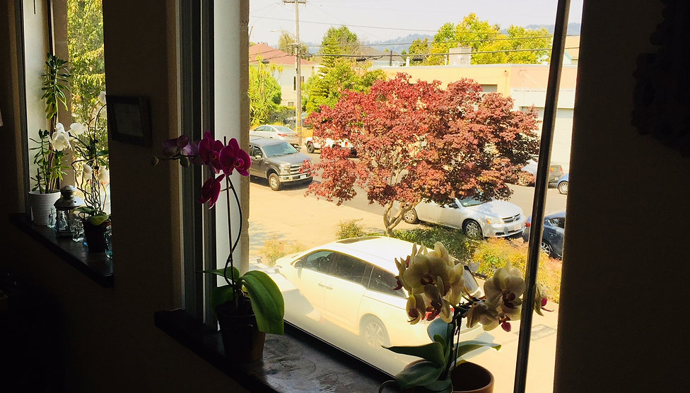 Emeryville Therapy Office