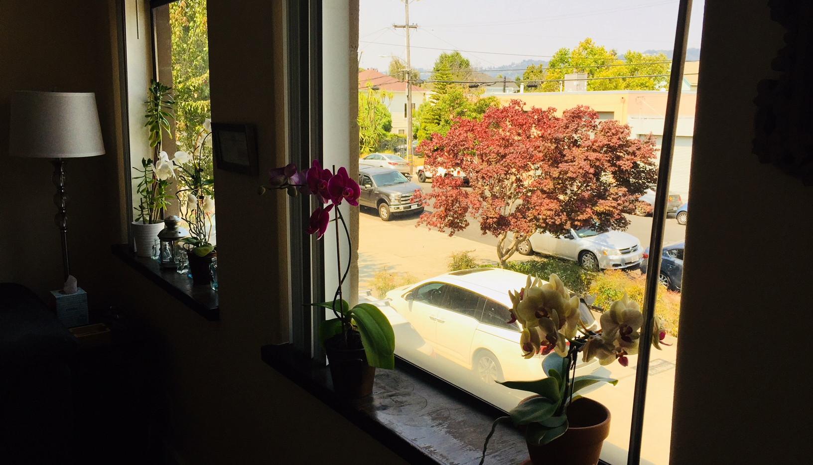 Large office windows