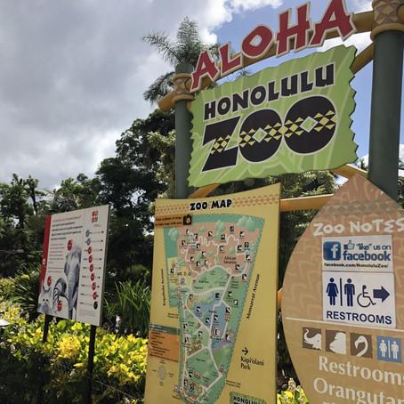 家族連れでもカップルでも楽しめるホノルル動物園