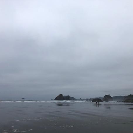 Moonstone beachはモノクロの世界 /カリフォルニア旅行(2)