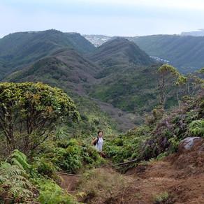 お気をつけて!ハワイロコを中心に人気のハイキング・トレイル